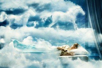 sapnas 1