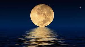 Naujieji Mėnulio metai
